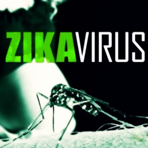 Zika Virus: Facts You Need to Know